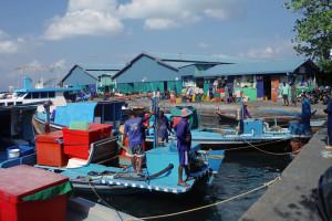31 emsige GeschÑftigkeit beim Fisch- und GemÅsemarkt